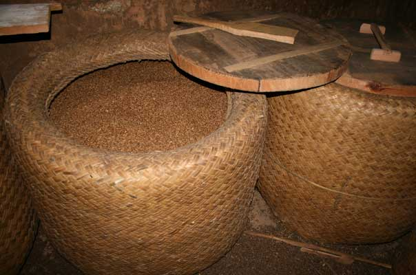 Buckwheat grains stored in Yuwa (bamboo baskets)